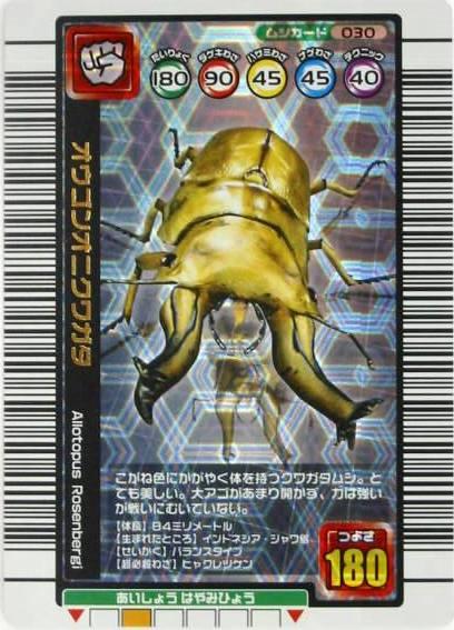 甲虫王者ムシキングカード/メイ...